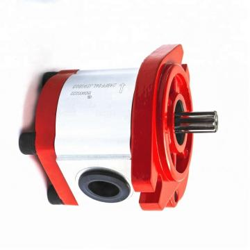 Vickers PV032R1L1T1NMRZ+PVAC2PCMNSYW20 Piston Pump PV Series