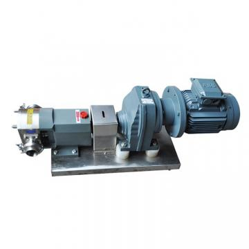 Vickers V20-1P8P-11C20 Vane Pump