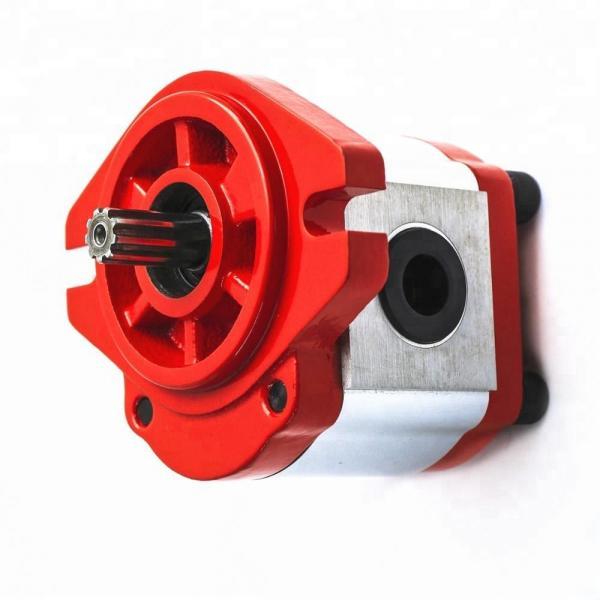 Vickers PV040R1K1T1NML14545 Piston Pump PV Series #1 image