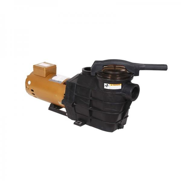 Vickers 4525V60A17-1CC22L Vane Pump #1 image